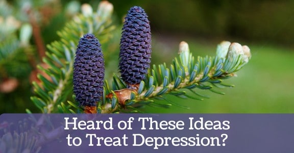 Heard of these Ideas to Treat Depression_ Blog 2